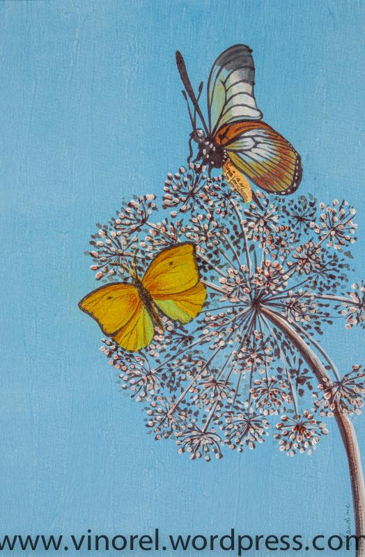 vinorel-papillons